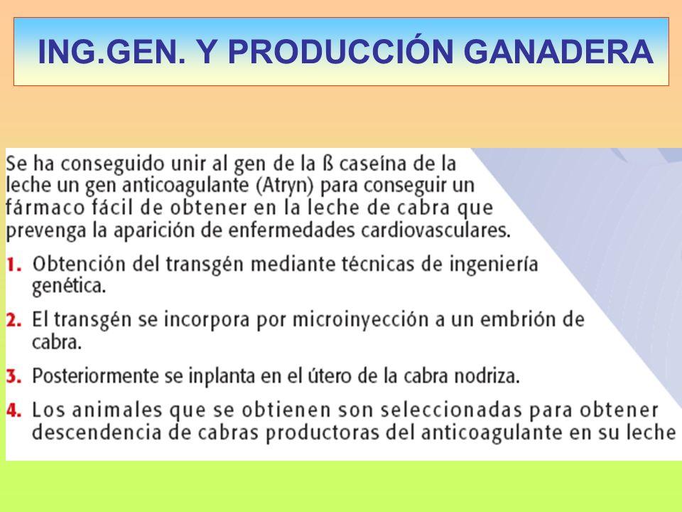 ING.GEN. Y PRODUCCIÓN GANADERA