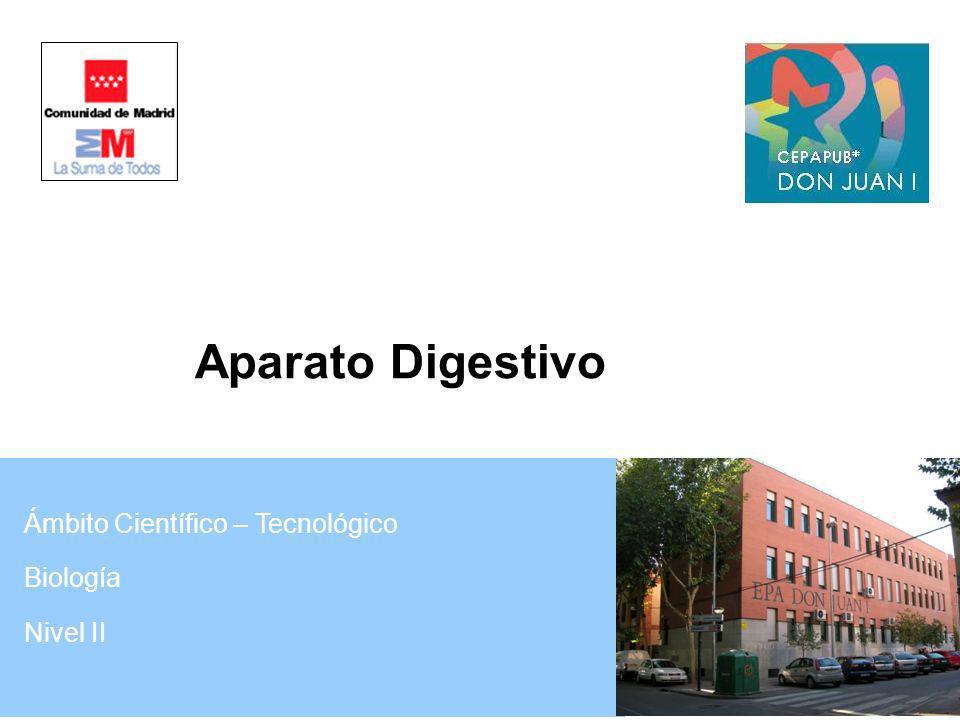 Ámbito Científico – Tecnológico Biología Nivel II Aparato Digestivo