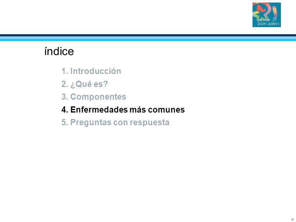 13 índice 1. Introducción 2. ¿Qué es? 3. Componentes 4. Enfermedades más comunes 5. Preguntas con respuesta