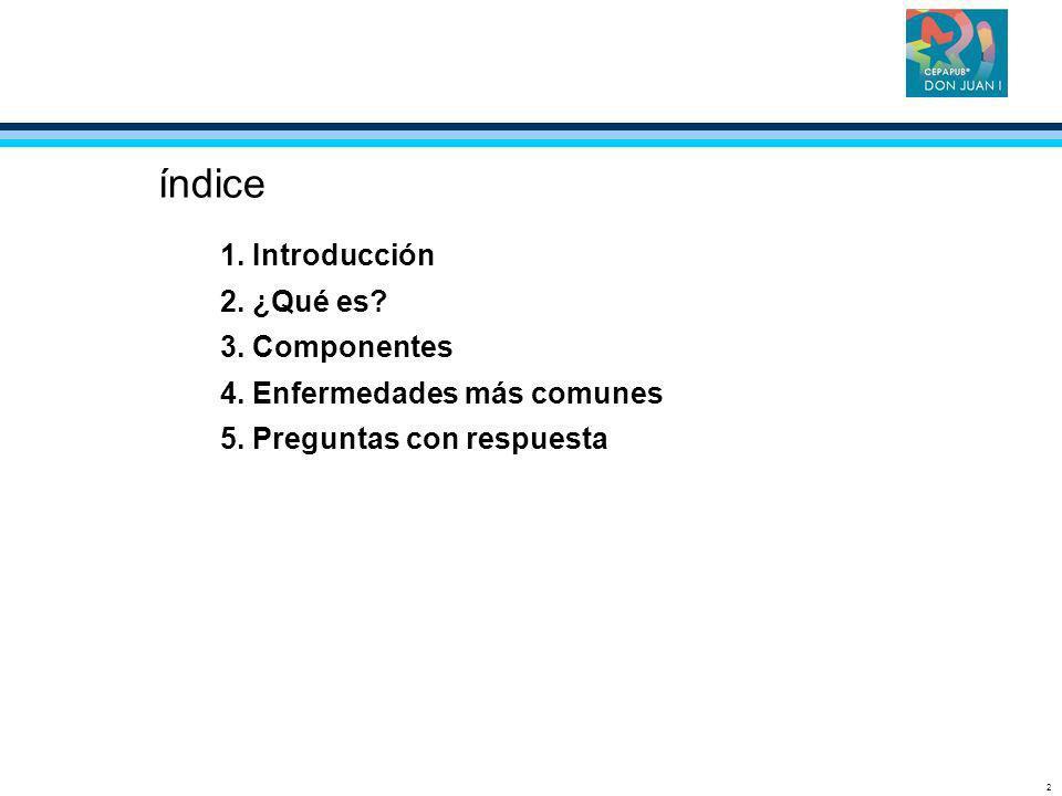 2 índice 1. Introducción 2. ¿Qué es? 3. Componentes 4. Enfermedades más comunes 5. Preguntas con respuesta