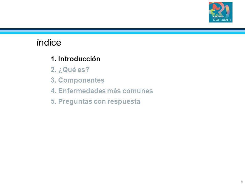3 índice 1. Introducción 2. ¿Qué es? 3. Componentes 4. Enfermedades más comunes 5. Preguntas con respuesta
