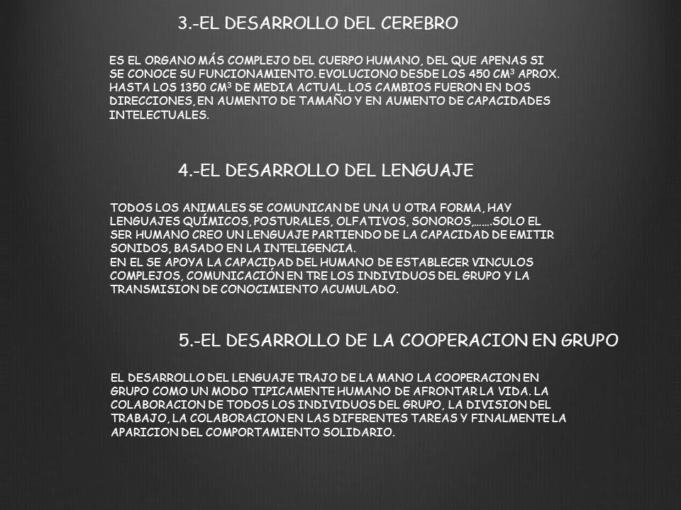 3.-EL DESARROLLO DEL CEREBRO ES EL ORGANO MÁS COMPLEJO DEL CUERPO HUMANO, DEL QUE APENAS SI SE CONOCE SU FUNCIONAMIENTO. EVOLUCIONO DESDE LOS 450 CM 3