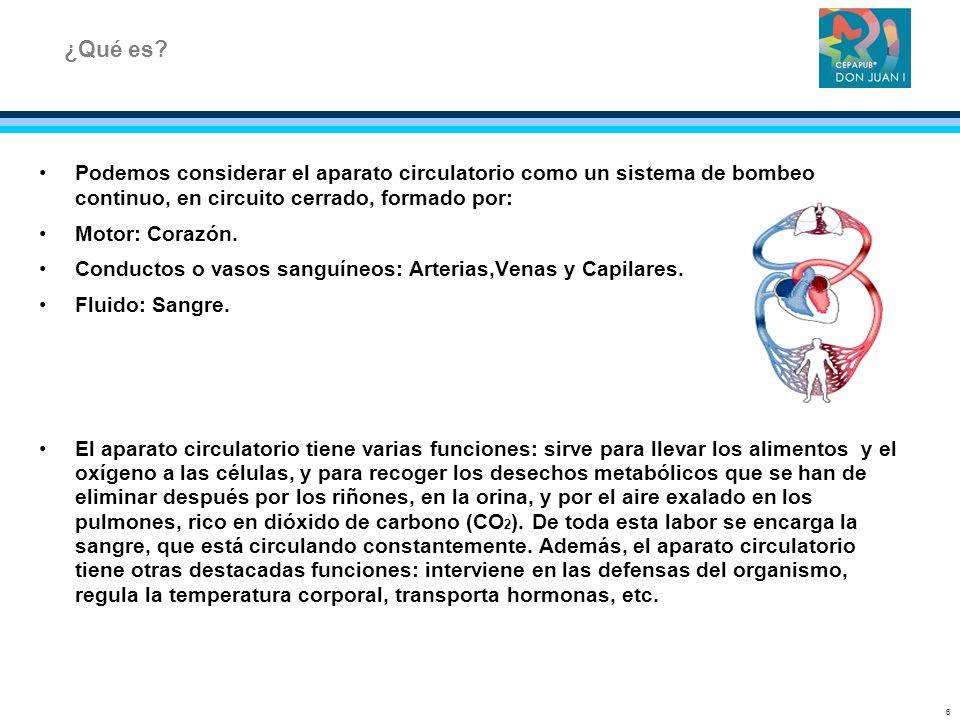 Podemos considerar el aparato circulatorio como un sistema de bombeo continuo, en circuito cerrado, formado por: Motor: Corazón. Conductos o vasos san