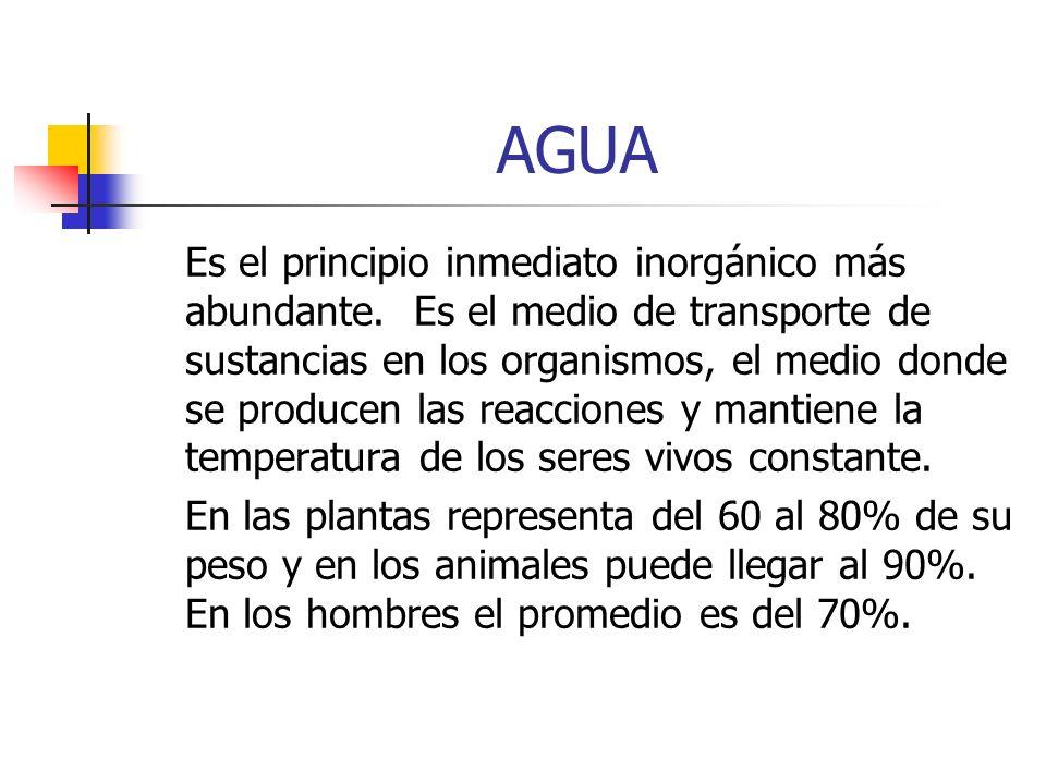 AGUA Es el principio inmediato inorgánico más abundante. Es el medio de transporte de sustancias en los organismos, el medio donde se producen las rea