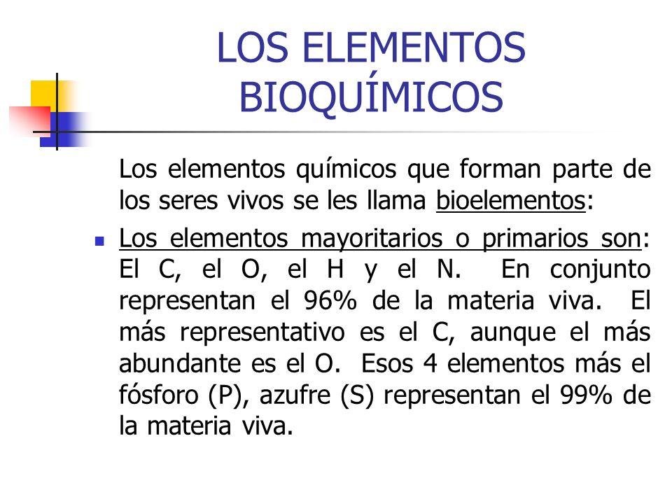 LOS ELEMENTOS BIOQUÍMICOS (continuación) El resto de elementos químicos presentes son los secundarios y oligoelementos: Como el sodio (Na), potasio (K), calcio (Ca), Magnesio (Mg) y hierro (Fe) que en conjunto no llegan al 1% de la materia viva.