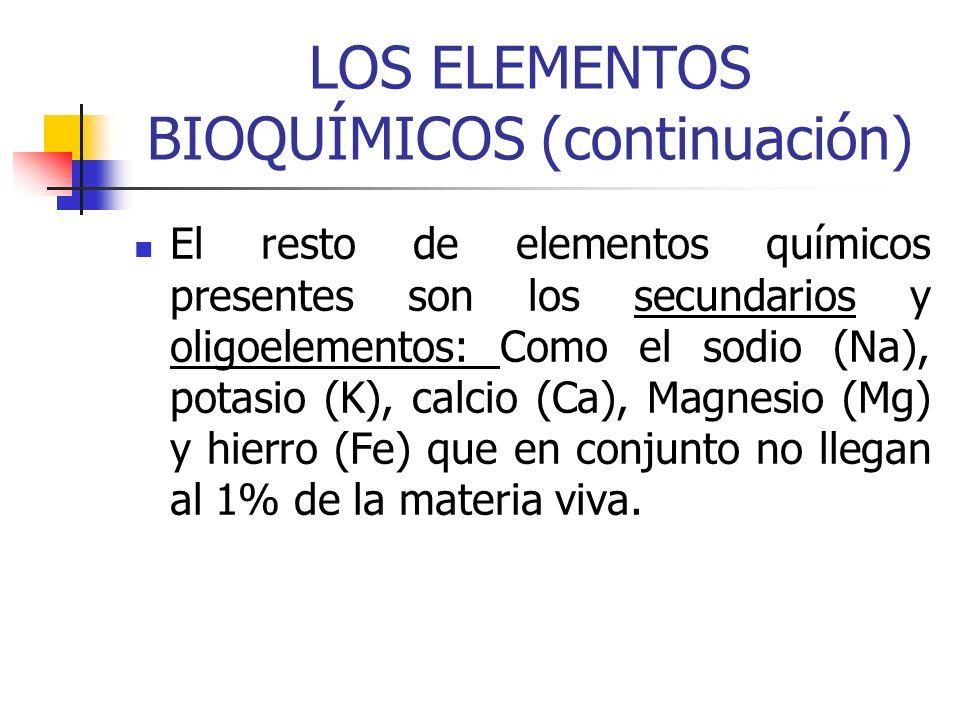 LOS ELEMENTOS BIOQUÍMICOS (continuación) El resto de elementos químicos presentes son los secundarios y oligoelementos: Como el sodio (Na), potasio (K