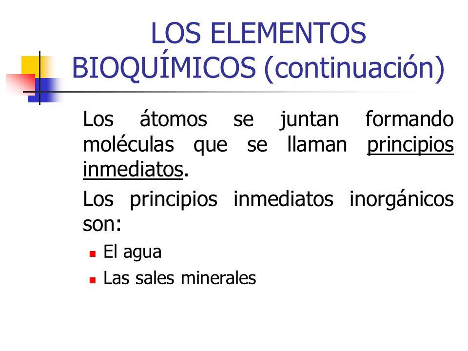 LOS ELEMENTOS BIOQUÍMICOS (continuación) Los principios inmediatos orgánicos son: Los glúcidos o hidratos de carbono Los lípidos Las proteínas Los ácidos nucléicos.