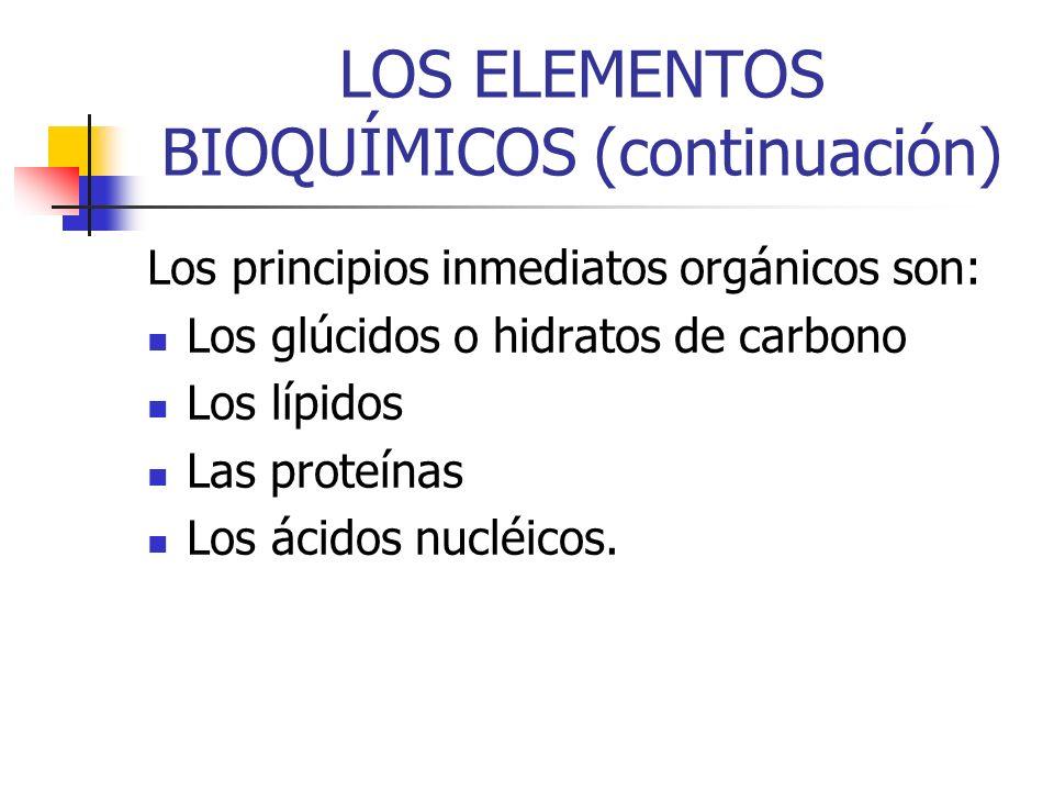 LOS ELEMENTOS BIOQUÍMICOS (continuación) Los principios inmediatos orgánicos son: Los glúcidos o hidratos de carbono Los lípidos Las proteínas Los áci