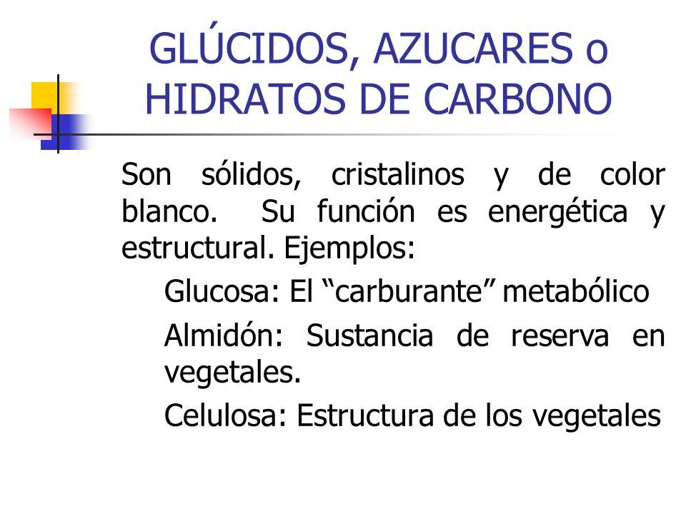 GLÚCIDOS, AZUCARES o HIDRATOS DE CARBONO Son sólidos, cristalinos y de color blanco. Su función es energética y estructural. Ejemplos: Glucosa: El car
