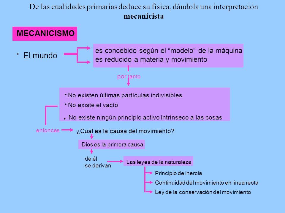 De las cualidades primarias deduce su física, dándola una interpretación mecanicista MECANICISMO El mundo es concebido según el modelo de la máquina e