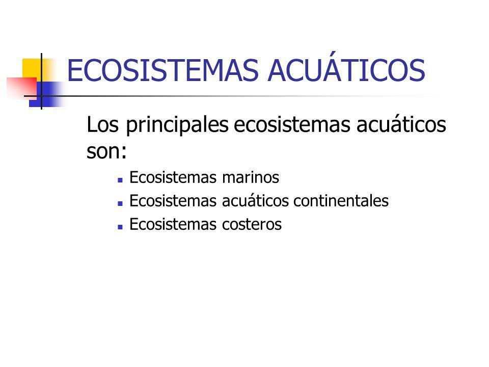 ECOSISTEMAS ACUÁTICOS Los principales ecosistemas acuáticos son: Ecosistemas marinos Ecosistemas acuáticos continentales Ecosistemas costeros