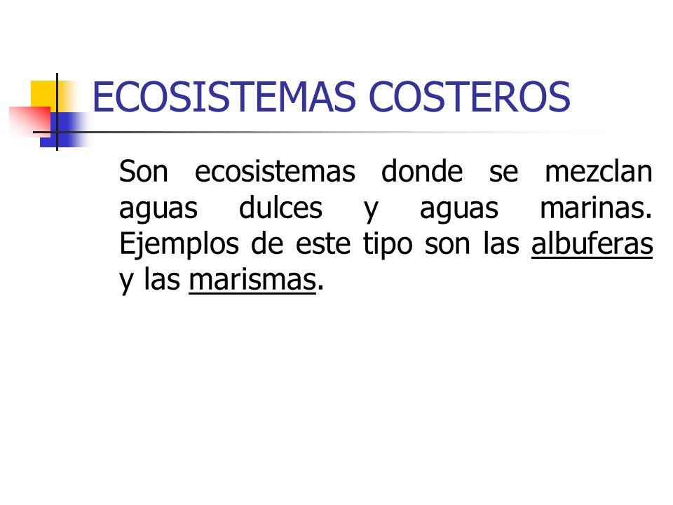 ECOSISTEMAS COSTEROS Son ecosistemas donde se mezclan aguas dulces y aguas marinas. Ejemplos de este tipo son las albuferas y las marismas.
