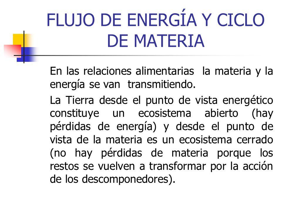 FLUJO DE ENERGÍA Y CICLO DE MATERIA En las relaciones alimentarias la materia y la energía se van transmitiendo. La Tierra desde el punto de vista ene