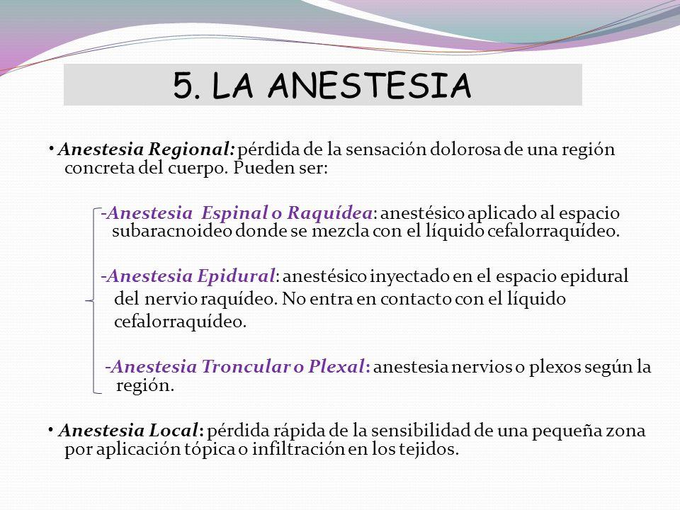 5. LA ANESTESIA Anestesia Regional: pérdida de la sensación dolorosa de una región concreta del cuerpo. Pueden ser: -Anestesia Espinal o Raquídea: ane