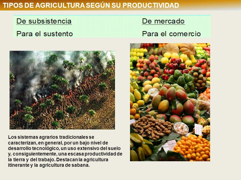 Los sistemas agrarios tradicionales se caracterizan, en general, por un bajo nivel de desarrollo tecnológico, un uso extensivo del suelo y, consiguien