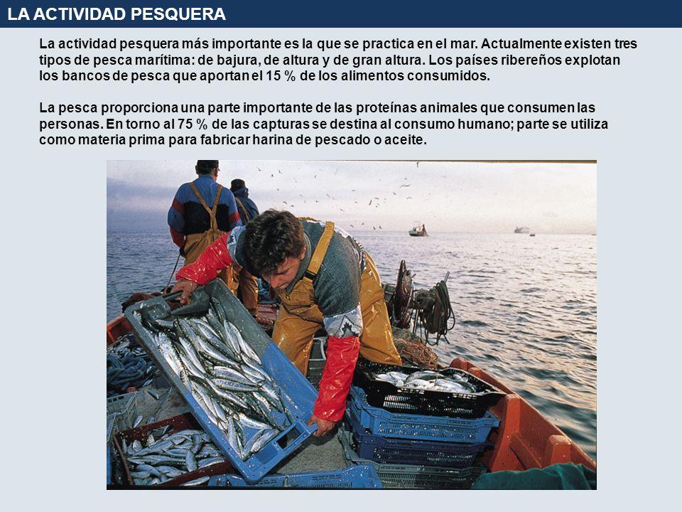 La actividad pesquera más importante es la que se practica en el mar. Actualmente existen tres tipos de pesca marítima: de bajura, de altura y de gran