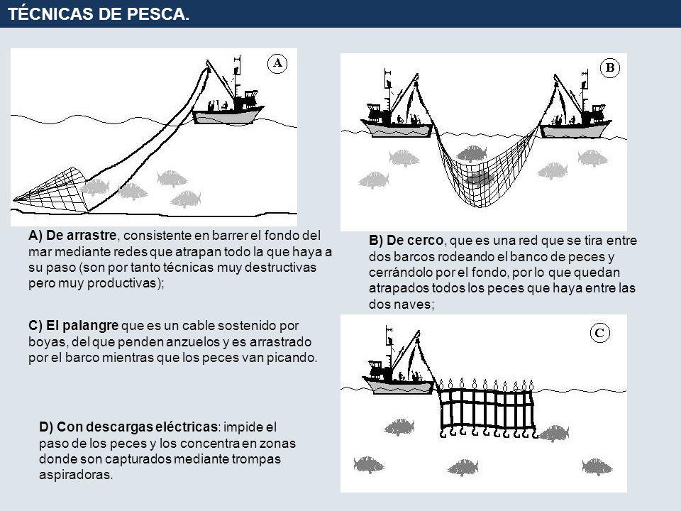 A) De arrastre, consistente en barrer el fondo del mar mediante redes que atrapan todo la que haya a su paso (son por tanto técnicas muy destructivas