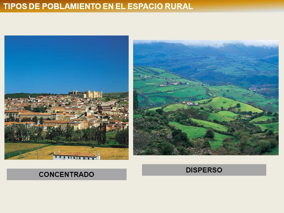 CUADRO COMPARATIVO AGRICULTURA TRADICIONAL Y MODERNA