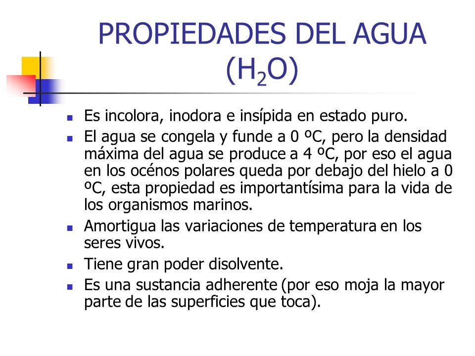 PROPIEDADES DEL AGUA (H 2 O) Es incolora, inodora e insípida en estado puro. El agua se congela y funde a 0 ºC, pero la densidad máxima del agua se pr