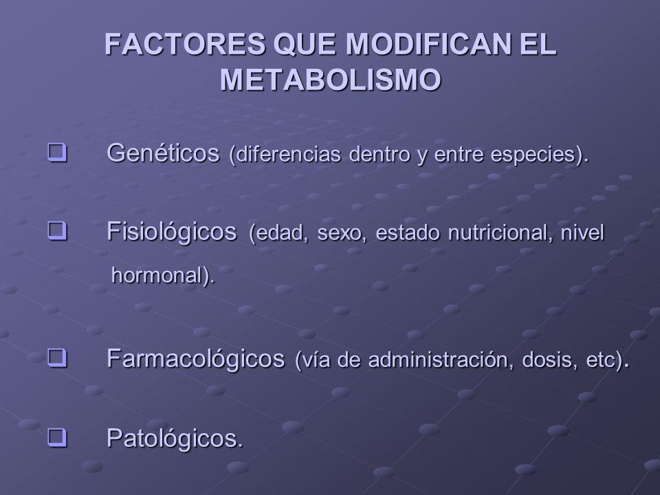 FACTORES QUE MODIFICAN EL METABOLISMO Genéticos (diferencias dentro y entre especies). Genéticos (diferencias dentro y entre especies). Fisiológicos (