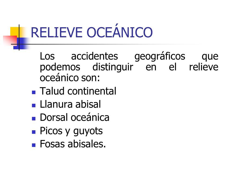 RELIEVE OCEÁNICO Los accidentes geográficos que podemos distinguir en el relieve oceánico son: Talud continental Llanura abisal Dorsal oceánica Picos