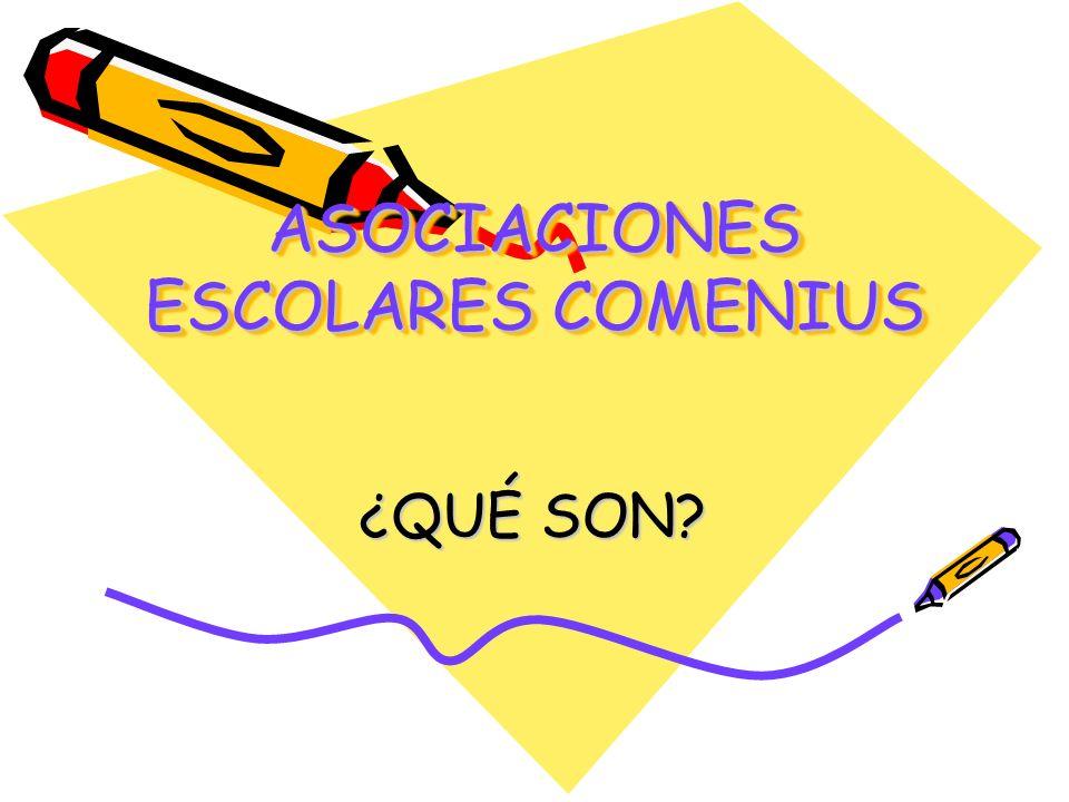 Las Asociaciones Escolares Comenius, promueven la cooperación europea entre grupos de alumnos y profesores de diferentes países europeos.