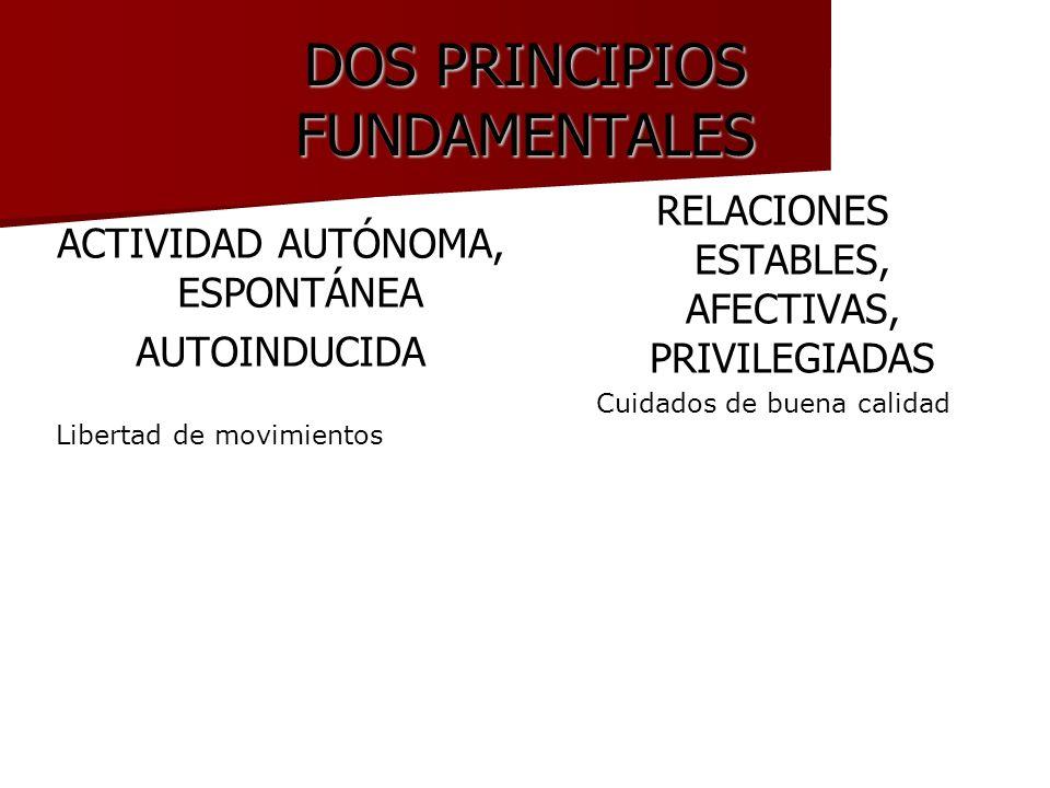 DOS PRINCIPIOS FUNDAMENTALES ACTIVIDAD AUTÓNOMA, ESPONTÁNEA AUTOINDUCIDA Libertad de movimientos RELACIONES ESTABLES, AFECTIVAS, PRIVILEGIADAS Cuidado
