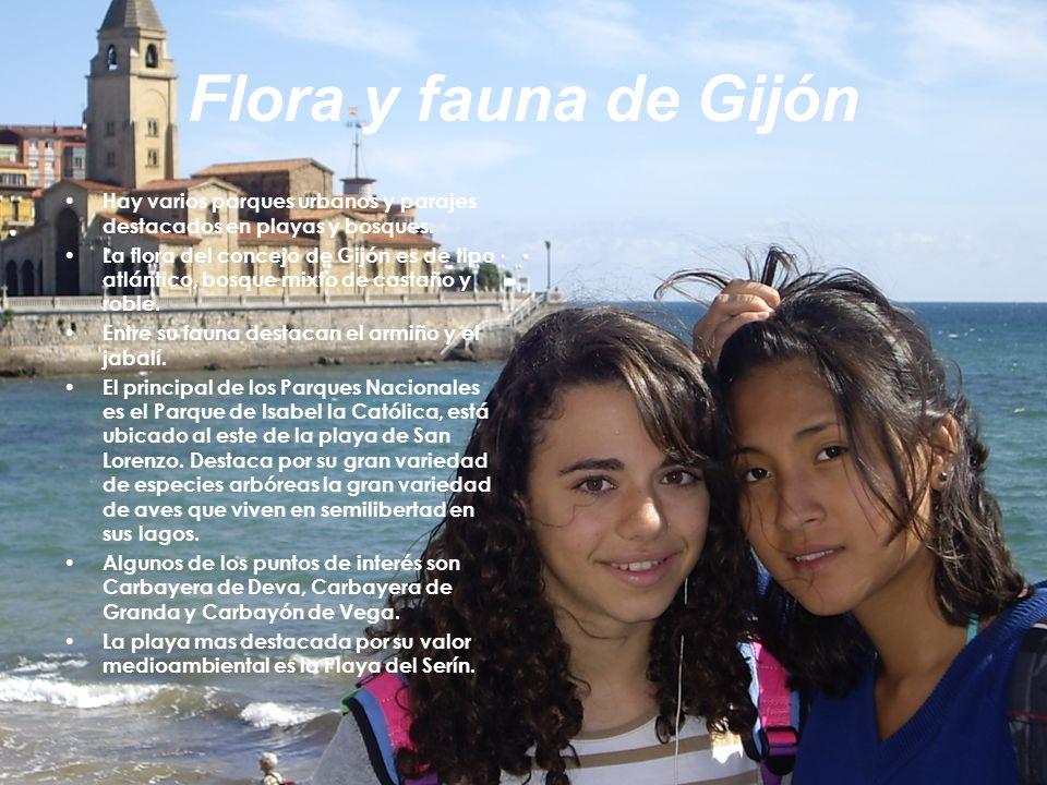 Flora y fauna de Gijón Hay varios parques urbanos y parajes destacados en playas y bosques. La flora del concejo de Gijón es de tipo atlántico, bosque
