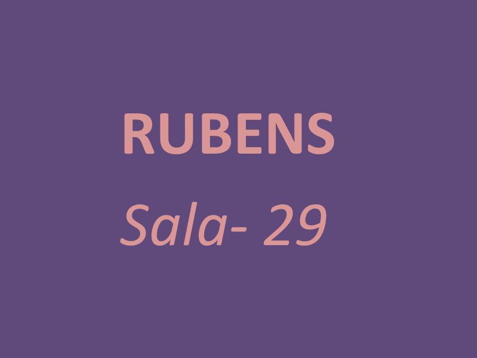 RUBENS Sala- 29
