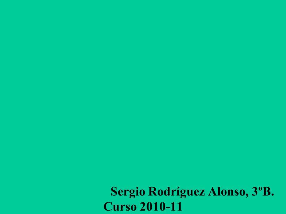 Sergio Rodríguez Alonso, 3ºB. Curso 2010-11