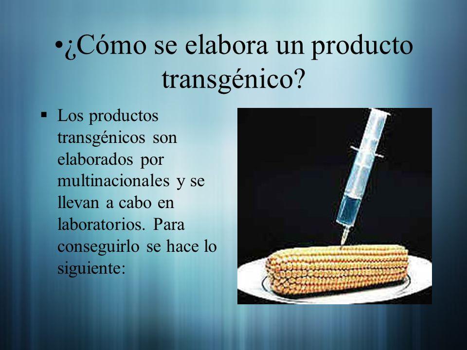 Los productos transgénicos son elaborados por multinacionales y se llevan a cabo en laboratorios. Para conseguirlo se hace lo siguiente: ¿Cómo se elab