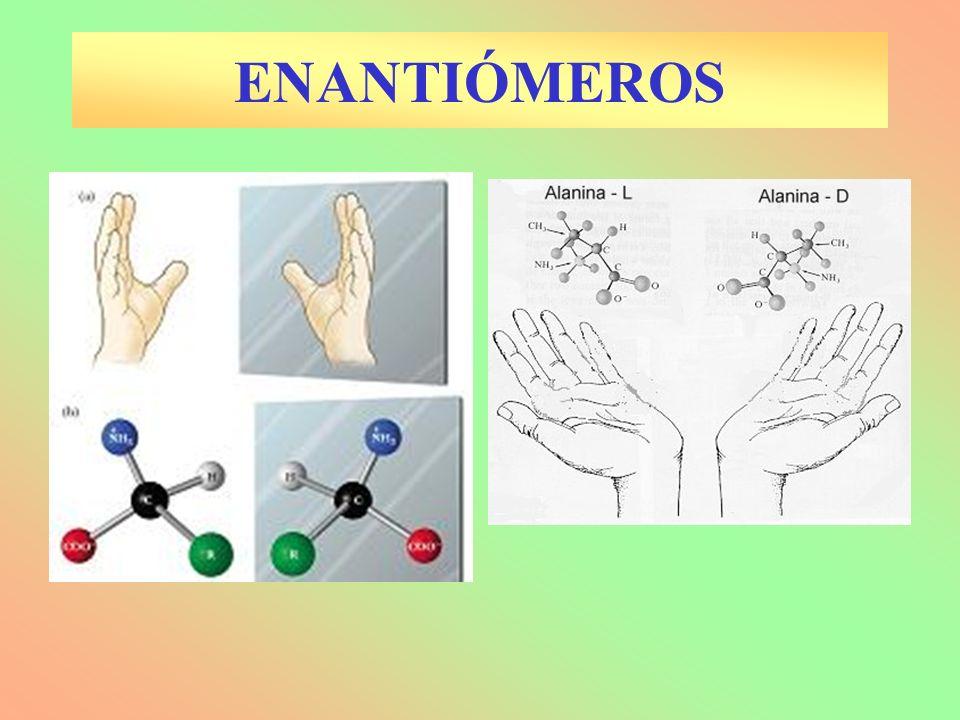 4.4.-ESTRUCTURA DE PROTEÍNAS