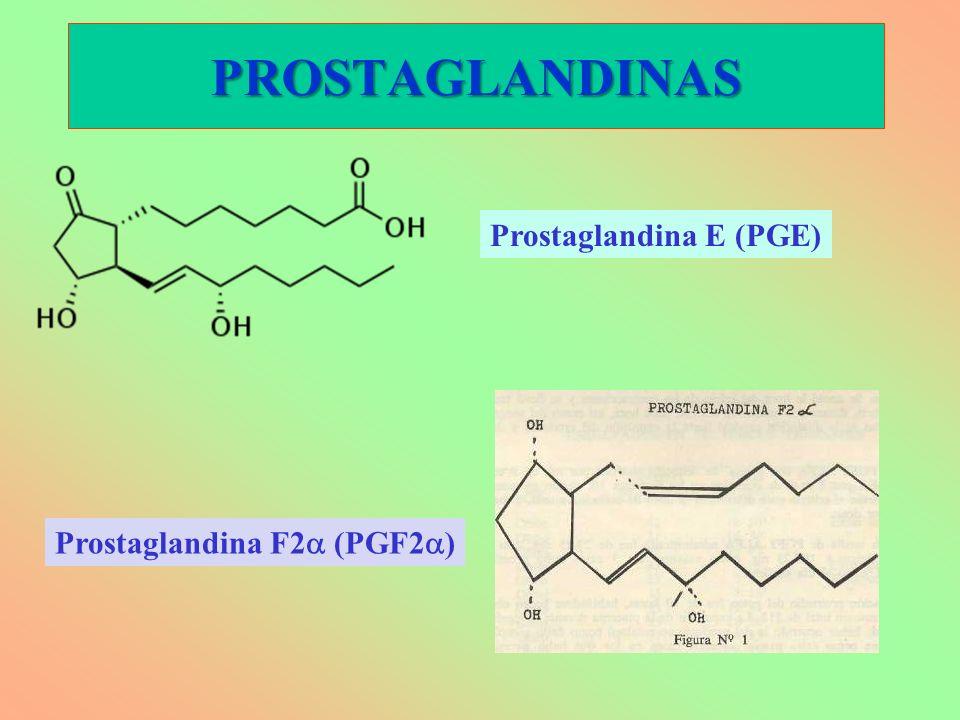 PROSTAGLANDINAS Prostaglandina E (PGE) Prostaglandina F2 (PGF2 )