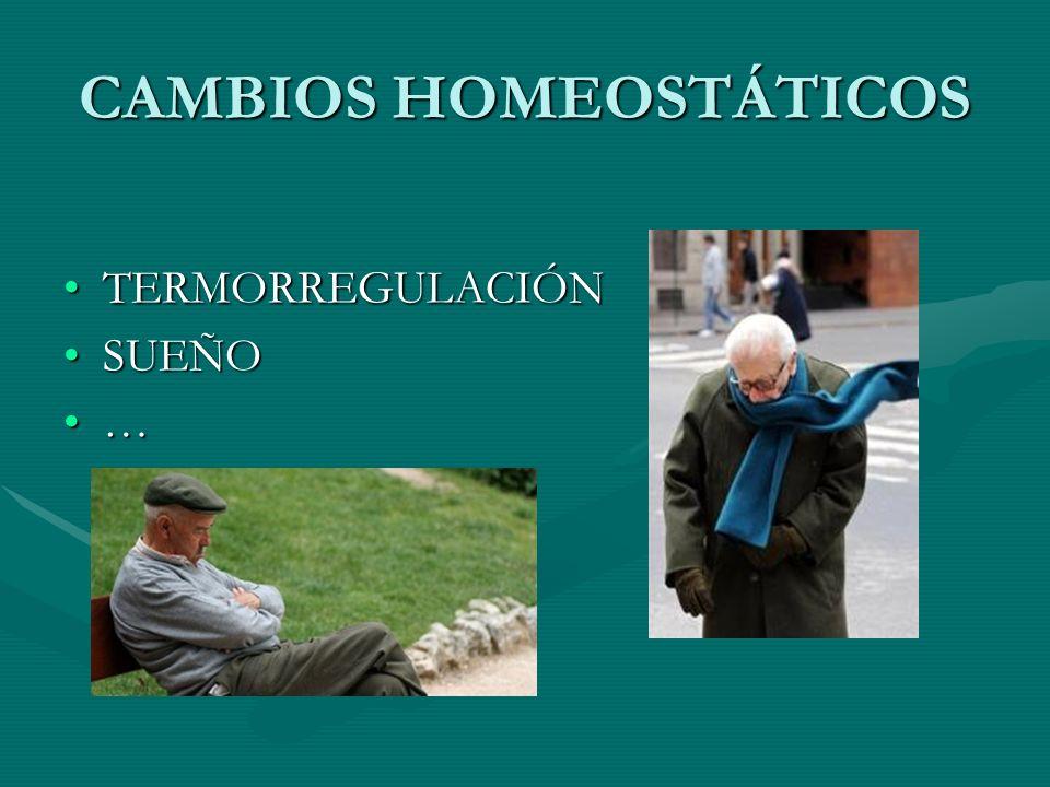 CAMBIOS HOMEOSTÁTICOS TERMORREGULACIÓNTERMORREGULACIÓN SUEÑOSUEÑO …