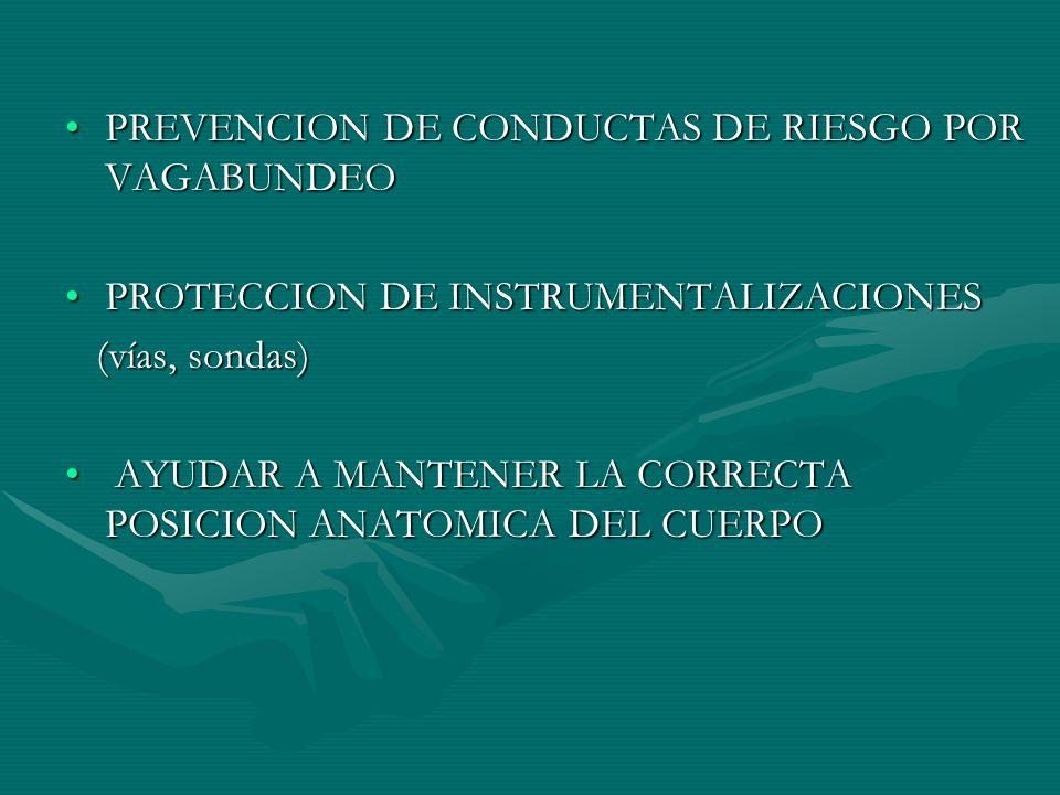PREVENCION DE CONDUCTAS DE RIESGO POR VAGABUNDEOPREVENCION DE CONDUCTAS DE RIESGO POR VAGABUNDEO PROTECCION DE INSTRUMENTALIZACIONESPROTECCION DE INST