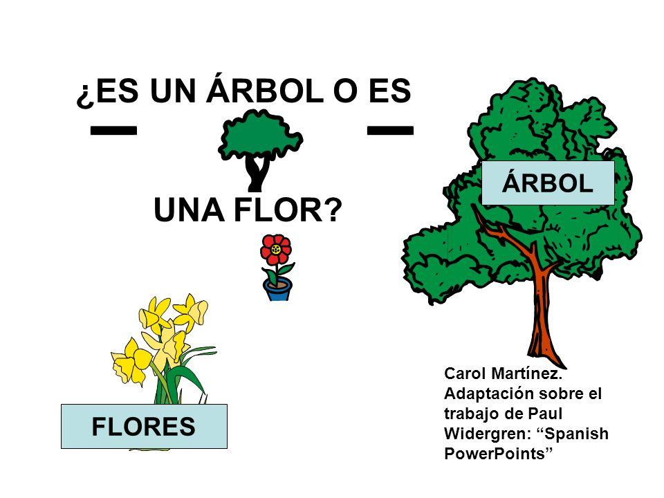 ¿ES UN ÁRBOL O ES UNA FLOR? FLORES ÁRBOL Carol Martínez. Adaptación sobre el trabajo de Paul Widergren: Spanish PowerPoints