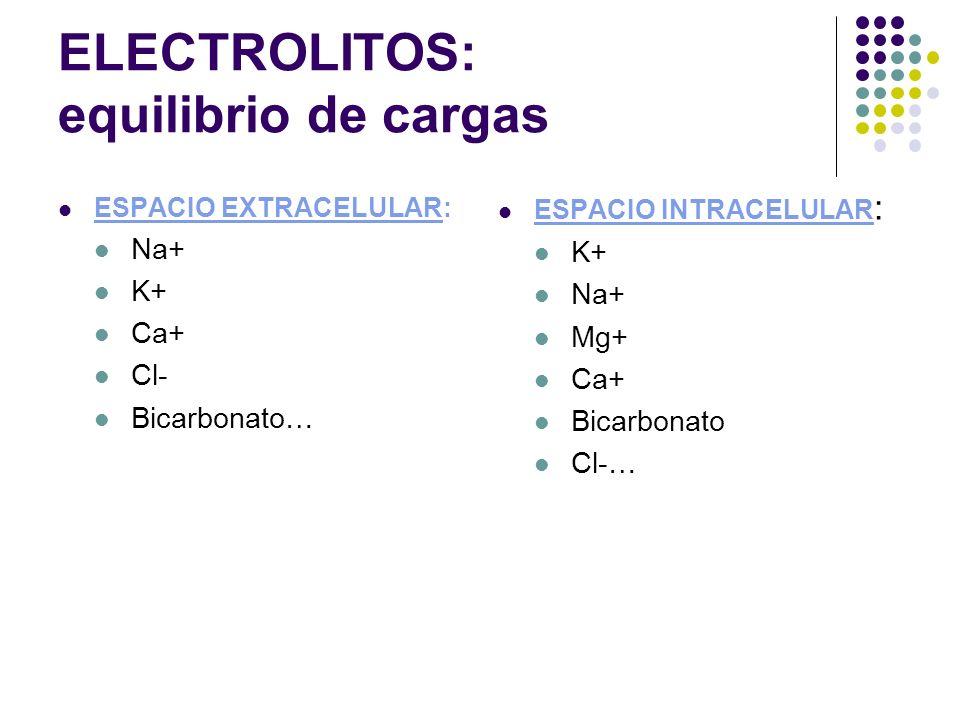 ELECTROLITOS: equilibrio de cargas ESPACIO EXTRACELULAR: Na+ K+ Ca+ Cl- Bicarbonato… ESPACIO INTRACELULAR : K+ Na+ Mg+ Ca+ Bicarbonato Cl-…