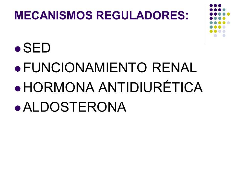 MECANISMOS REGULADORES : SED FUNCIONAMIENTO RENAL HORMONA ANTIDIURÉTICA ALDOSTERONA