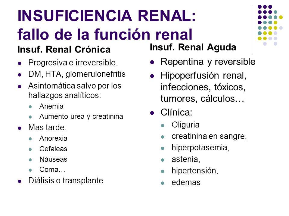 INSUFICIENCIA RENAL: fallo de la función renal Insuf.