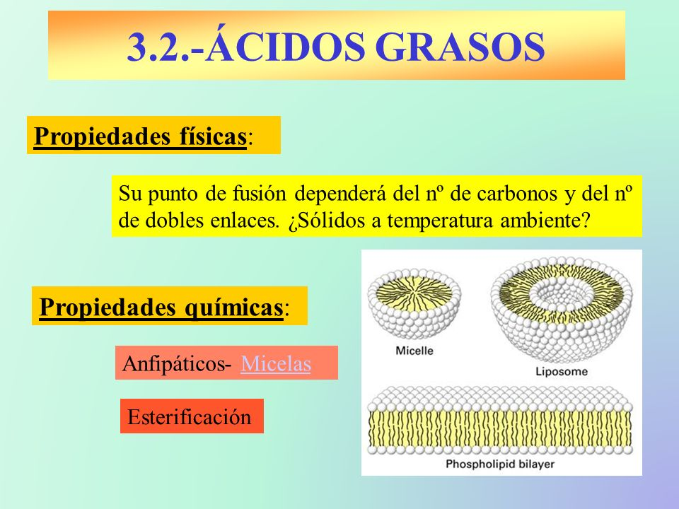 3.2.-ÁCIDOS GRASOS Propiedades físicas: Esterificación Propiedades químicas: Su punto de fusión dependerá del nº de carbonos y del nº de dobles enlace
