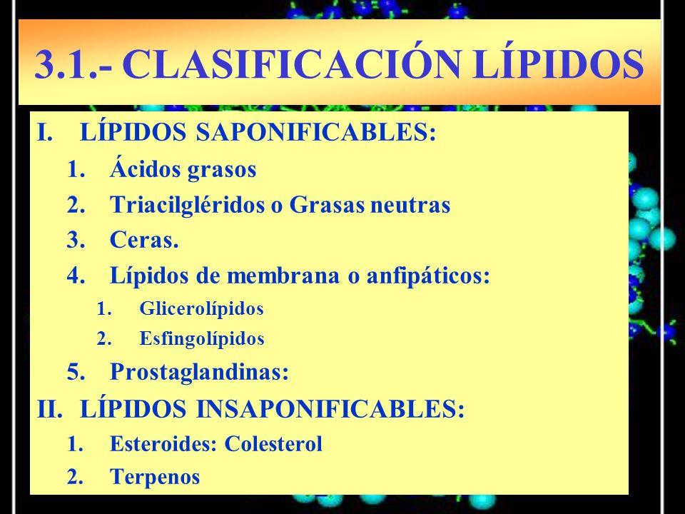 I.LÍPIDOS SAPONIFICABLES: 1.Ácidos grasos 2.Triacilgléridos o Grasas neutras 3.Ceras. 4.Lípidos de membrana o anfipáticos: 1.Glicerolípidos 2.Esfingol