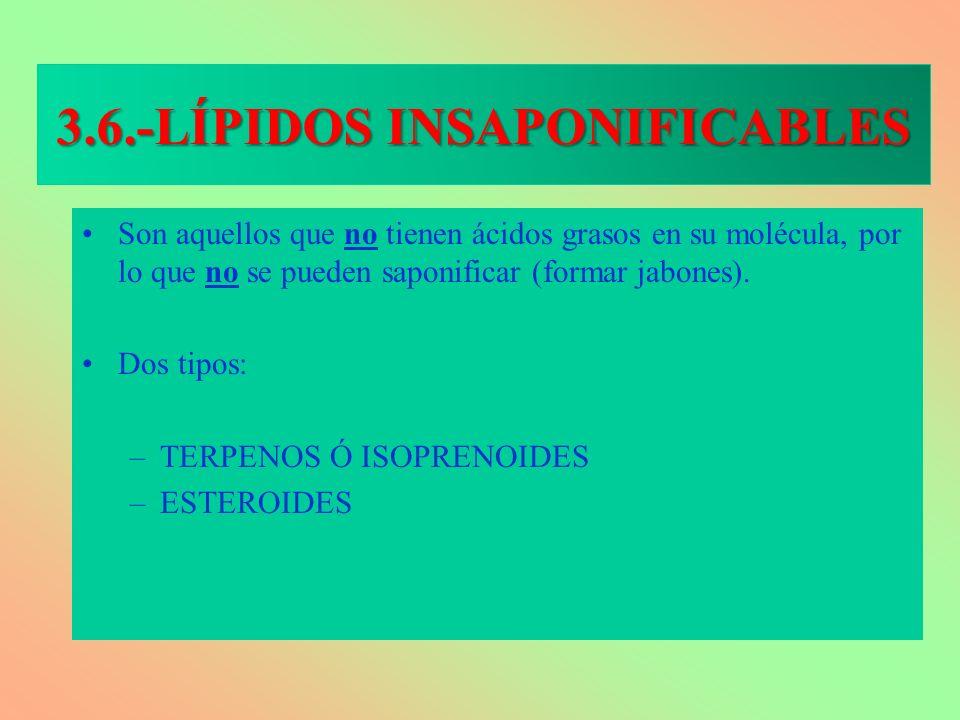 3.6.-LÍPIDOS INSAPONIFICABLES Son aquellos que no tienen ácidos grasos en su molécula, por lo que no se pueden saponificar (formar jabones). Dos tipos