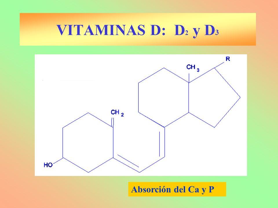 VITAMINAS D: D 2 y D 3 Absorción del Ca y P