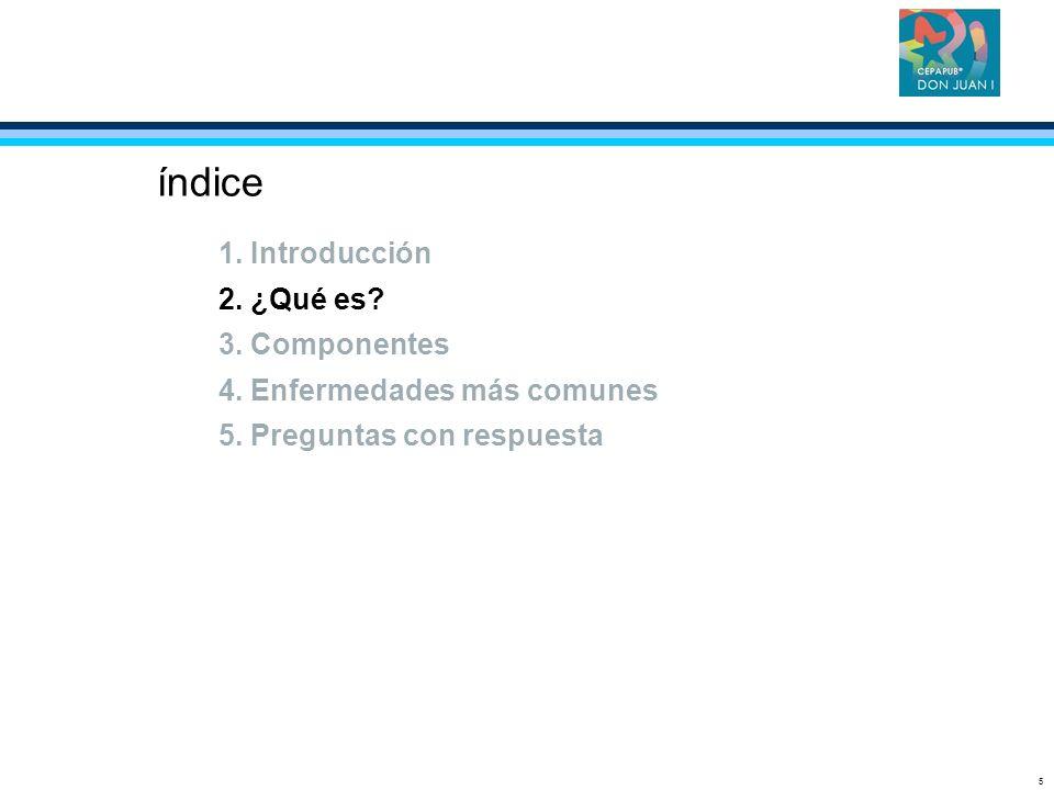 5 índice 1. Introducción 2. ¿Qué es? 3. Componentes 4. Enfermedades más comunes 5. Preguntas con respuesta