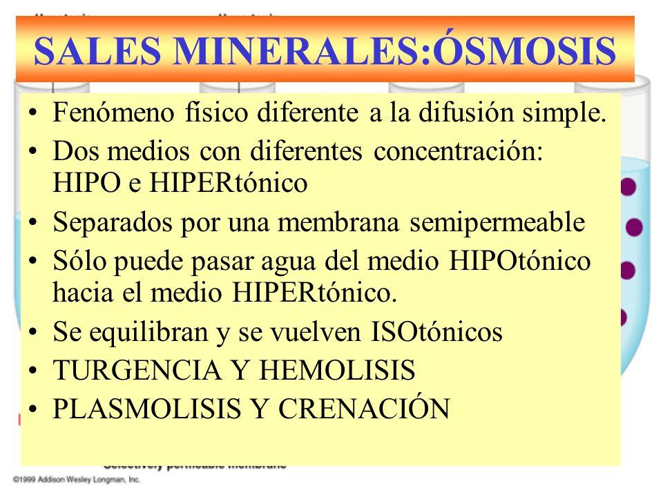 Fenómeno físico diferente a la difusión simple. Dos medios con diferentes concentración: HIPO e HIPERtónico Separados por una membrana semipermeable S