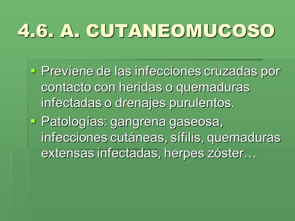 4.6. A. CUTANEOMUCOSO Previene de las infecciones cruzadas por contacto con heridas o quemaduras infectadas o drenajes purulentos. Previene de las inf