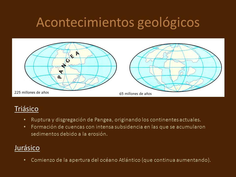 Acontecimientos geológicos Ruptura y disgregación de Pangea, originando los continentes actuales. Formación de cuencas con intensa subsidencia en las