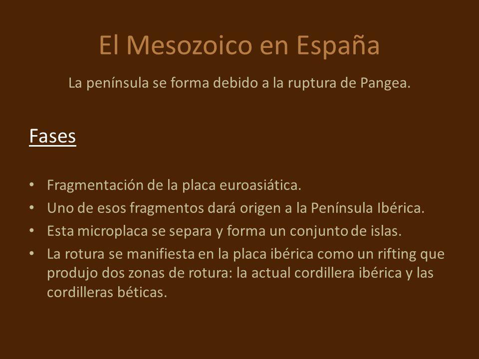 El Mesozoico en España La península se forma debido a la ruptura de Pangea. Fases Fragmentación de la placa euroasiática. Uno de esos fragmentos dará