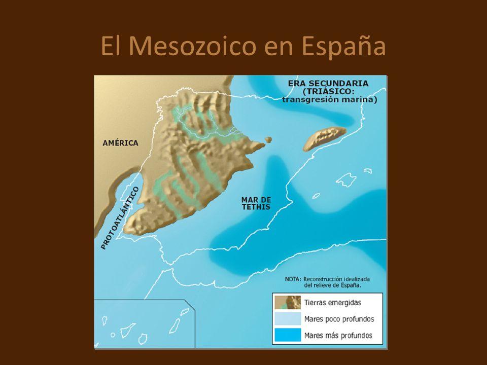 El Mesozoico en España