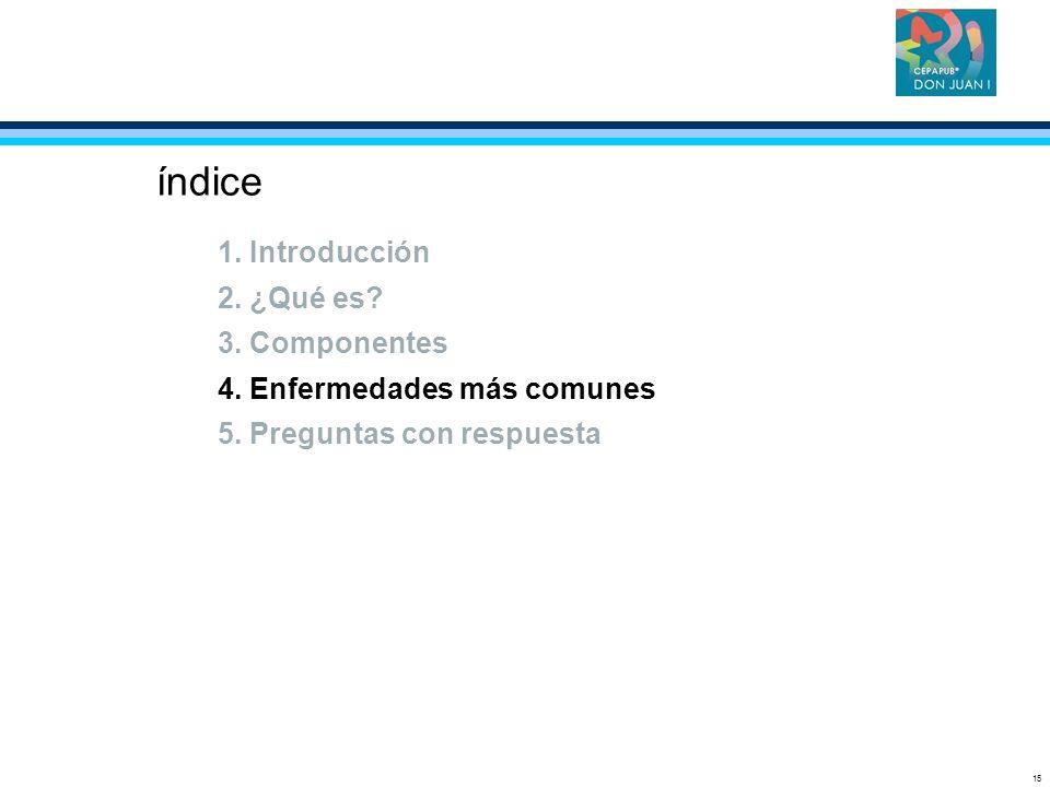 15 índice 1. Introducción 2. ¿Qué es? 3. Componentes 4. Enfermedades más comunes 5. Preguntas con respuesta